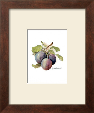 Plums by Peggy Abrams Pricing Limited Edition Print image