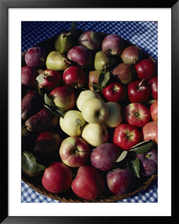 Pears And Varieties Of Apples In A Bowl At The Tilth Festival In Seattle by Sam Abell Pricing Limited Edition Print image