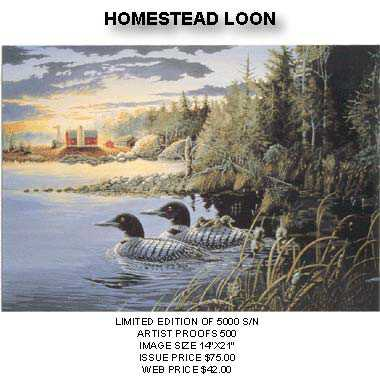 Homestead Loon by Donald Blakney Pricing Limited Edition Print image