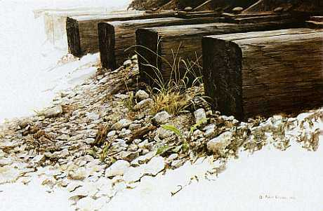 By The Tracks Killdeer by Robert Bateman Pricing Limited Edition Print image