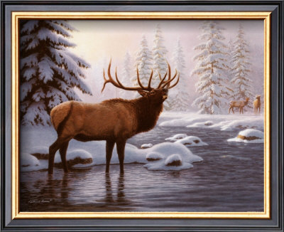 Elk Ii by Richard Burns Pricing Limited Edition Print image