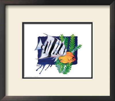 Atlantic Spade Fish by Paul Brent Pricing Limited Edition Print image
