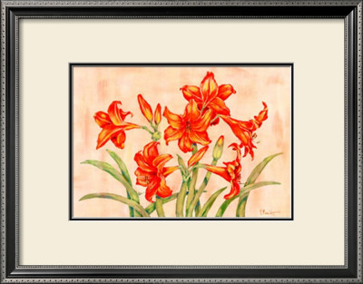 Linen Scroll Amaryllis by Paul Brent Pricing Limited Edition Print image