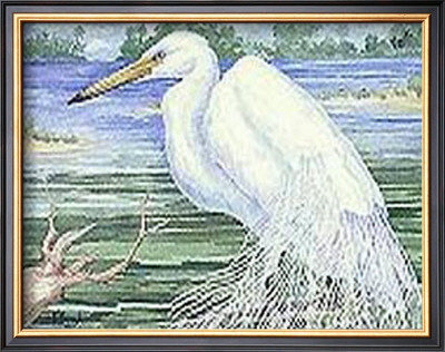 American Egret by Paul Brent Pricing Limited Edition Print image
