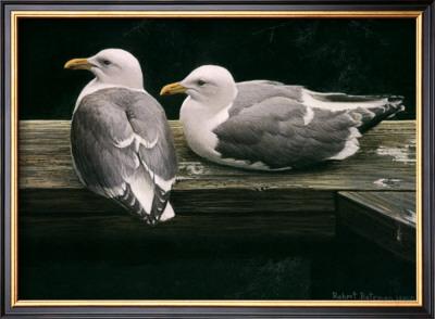 Gulls Resting by Robert Bateman Pricing Limited Edition Print image