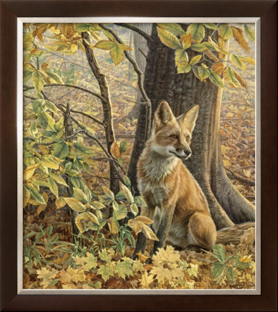 Eyes Of Autumn by Kalon Baughan Pricing Limited Edition Print image