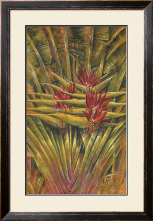 Bird Of Paradise by Steve Butler Pricing Limited Edition Print image