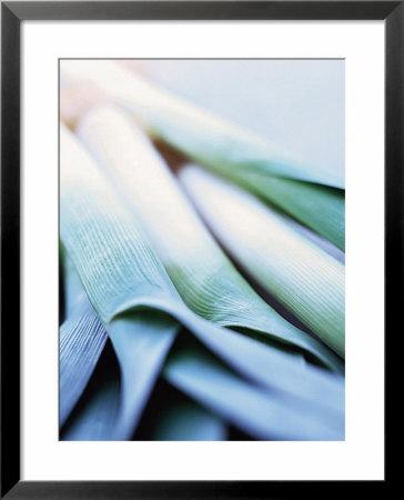 Leek Stalks by Steve Baxter Pricing Limited Edition Print image