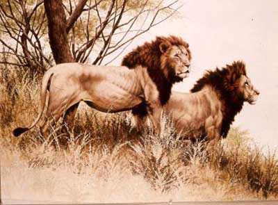 Bachelor Pair by Guy Coheleach Pricing Limited Edition Print image