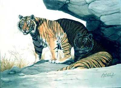 Bengal Brace by Guy Coheleach Pricing Limited Edition Print image