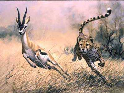 Chase by Guy Coheleach Pricing Limited Edition Print image