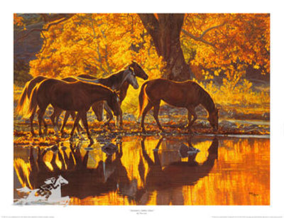 Autumn's Amber Glow by Tim Cox Pricing Limited Edition Print image
