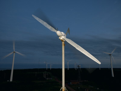 Whale-Inspired Windmill Turbine Blades Are Being Tested For Power by Robert Clark Pricing Limited Edition Print image