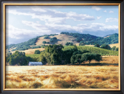 Wine Country by June Carey Pricing Limited Edition Print image