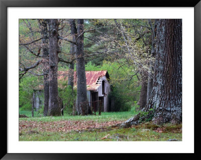 An Old Barn In The Tennessee Countryside, Tennessee, Usa by Richard Cummins Pricing Limited Edition Print image