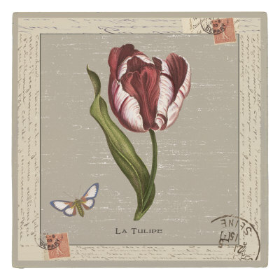 La Tulipe by Sophia Davidson Pricing Limited Edition Print image
