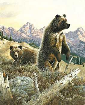 Grizzlies by R G Finney Pricing Limited Edition Print image