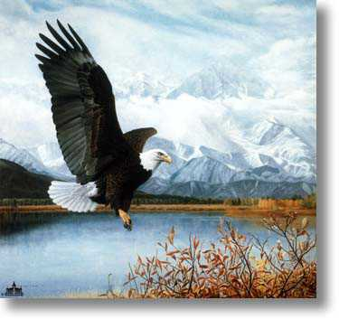 Wings Over America by Charles Frace' Pricing Limited Edition Print image