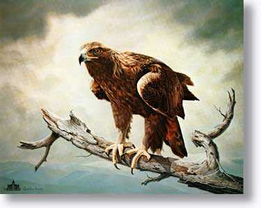 Golden Eagle by Charles Frace' Pricing Limited Edition Print image