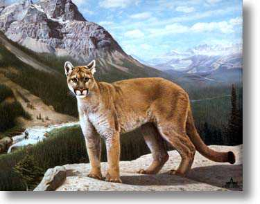 His Domain by Charles Frace' Pricing Limited Edition Print image