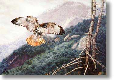 Lofty View by Charles Frace' Pricing Limited Edition Print image