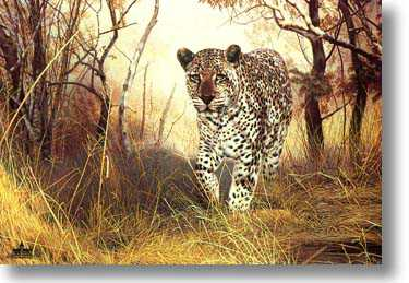 Lone Hunter by Charles Frace' Pricing Limited Edition Print image