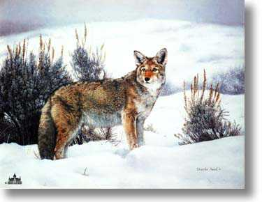 Solitude by Charles Frace' Pricing Limited Edition Print image