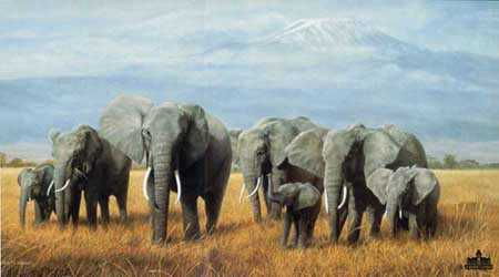 Treasures Of Africa by Charles Frace' Pricing Limited Edition Print image