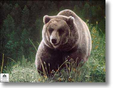 Unrivaled Griz by Charles Frace' Pricing Limited Edition Print image