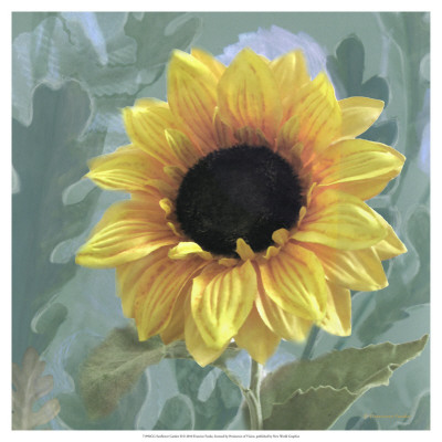 Sunflower Garden Ii by Francine Funke Pricing Limited Edition Print image