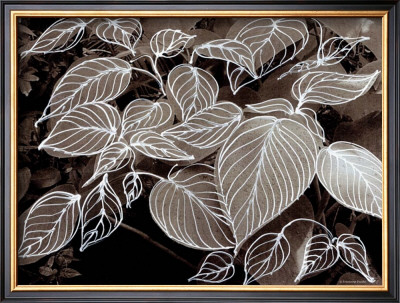 Sepia Hosta Ii by Francine Funke Pricing Limited Edition Print image