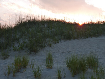 Sun Sets Behind Grassy Sand Dunes by Stacy Gold Pricing Limited Edition Print image