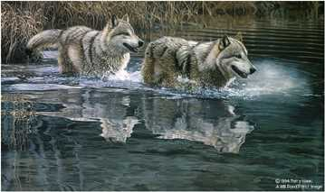 Crossing Wolves by Terry Isaac Pricing Limited Edition Print image
