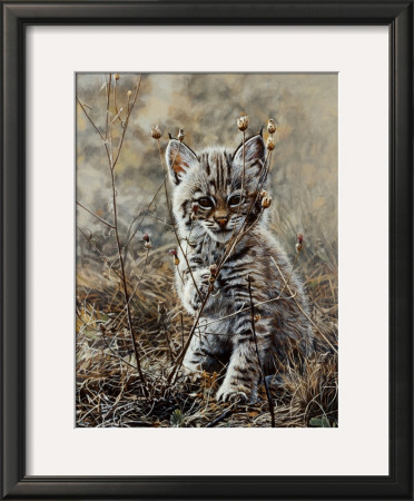 Peek A Boo by Terry Isaac Pricing Limited Edition Print image