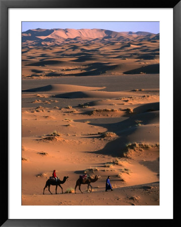 Camel Caravan Crossing Dunes, Erg Chebbi Desert, Morocco by John Elk Iii Pricing Limited Edition Print image