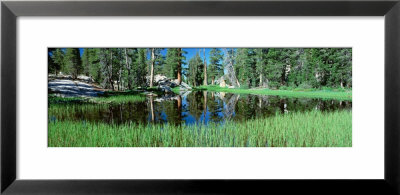 Tuolumne Meadows Pond, High Country, Yosemite National Park, California, Usa by Panoramic Images Pricing Limited Edition Print image