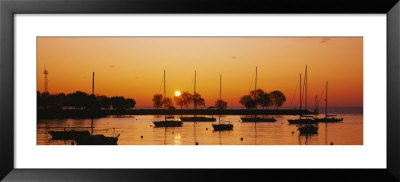 Silhouette Of Sailboats In A Lake, Lake Michigan, Chicago, Illinois, Usa by Panoramic Images Pricing Limited Edition Print image