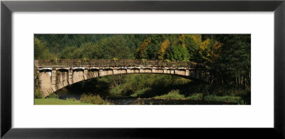 Bridge In A Forest, Black Forest, Germany by Panoramic Images Pricing Limited Edition Print image