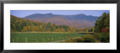 Woman Cycling On A Road, Stowe, Vermont, Usa by Panoramic Images Pricing Limited Edition Print image