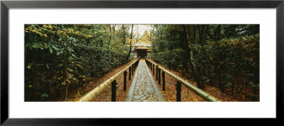 Path Leading To A Temple, Kyoto, Honshu, Japan by Panoramic Images Pricing Limited Edition Print image
