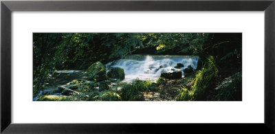 Waterfall In The Forest, Birks O' Aberfeldy, Perthshire, Scotland by Panoramic Images Pricing Limited Edition Print image
