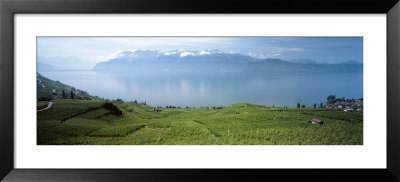 Landscape, Lake Geneva, Switzerland by Panoramic Images Pricing Limited Edition Print image