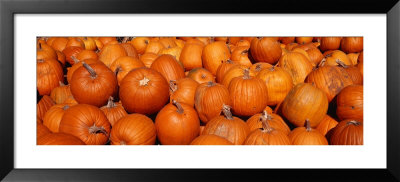 Close-Up Of Pumpkins by Panoramic Images Pricing Limited Edition Print image