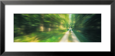 Road, Greenery, Trees, Germany by Panoramic Images Pricing Limited Edition Print image