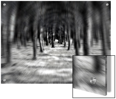Looking Through A Forest, Digital Zoom Effect by I.W. Pricing Limited Edition Print image