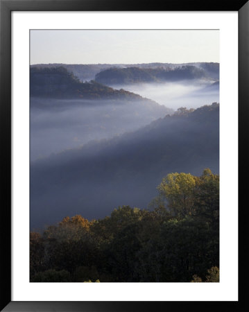 Morning Fog On Ridges Of Red River Gorge Geological Area, Great Smokey Mountains National Park, Tn by Adam Jones Pricing Limited Edition Print image