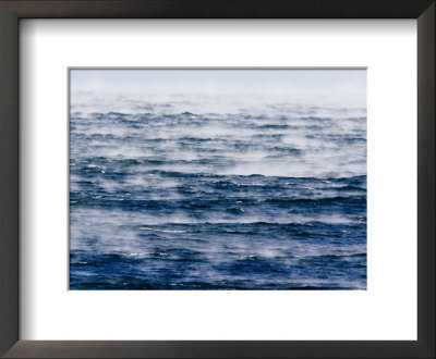 Scenic View Of Sea Smoke, Created By High, Cold Winds, Massachusetts by Tim Laman Pricing Limited Edition Print image