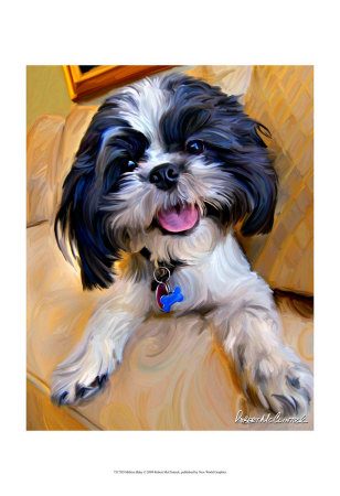 Shihtzu Baby by Robert Mcclintock Pricing Limited Edition Print image