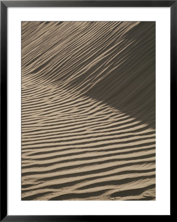 Wind-Rippled Sand Dunes by Marc Moritsch Pricing Limited Edition Print image
