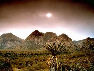 Mojave Desert, Las Vegas, Nevada by Images Monsoon Pricing Limited Edition Print image